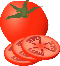 image free View tomato png free. 100 clipart longevity
