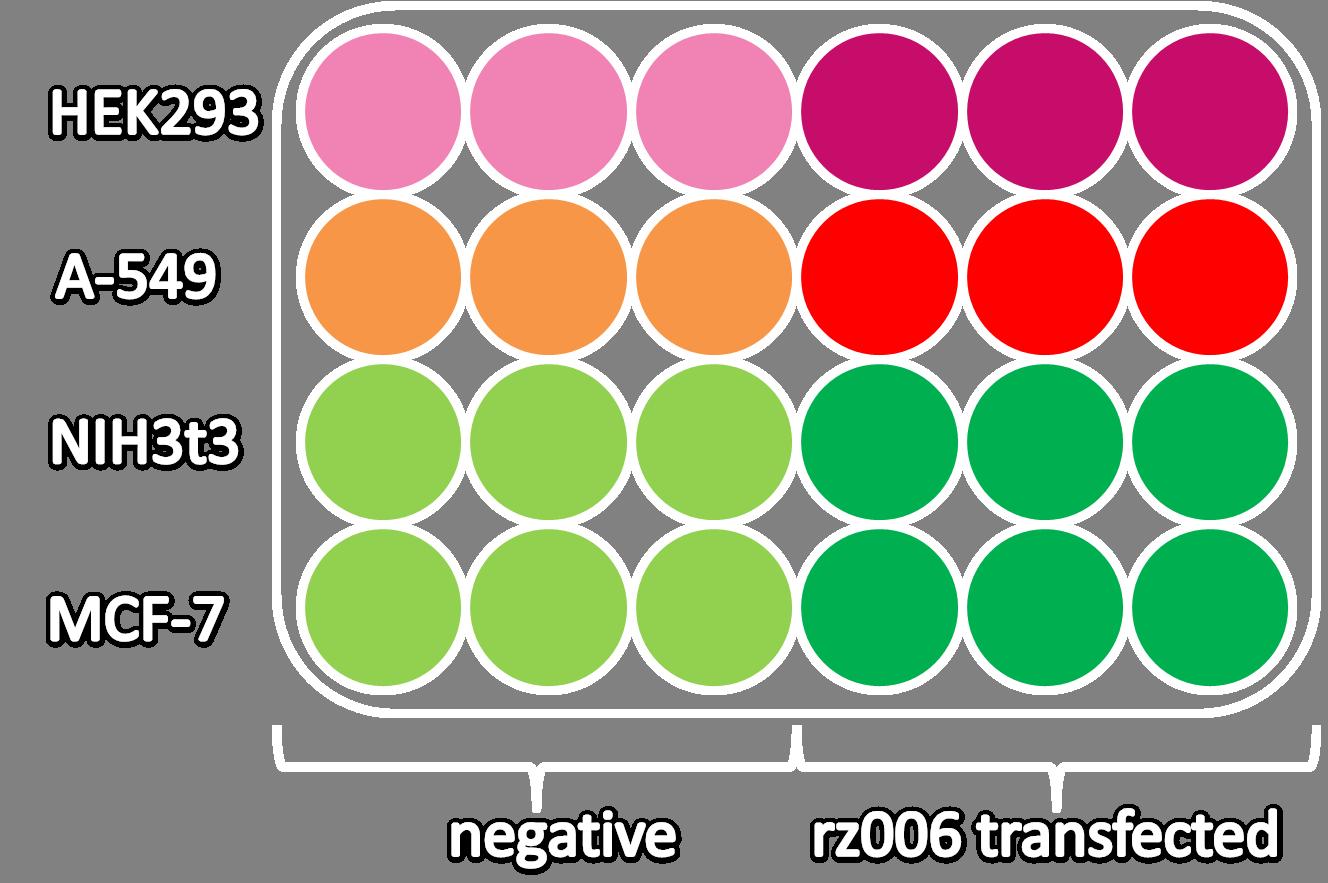 vector transparent download Labjournal