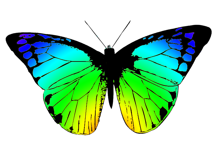 vector royalty free library Butterflies clipartix . 3 clipart butterfly