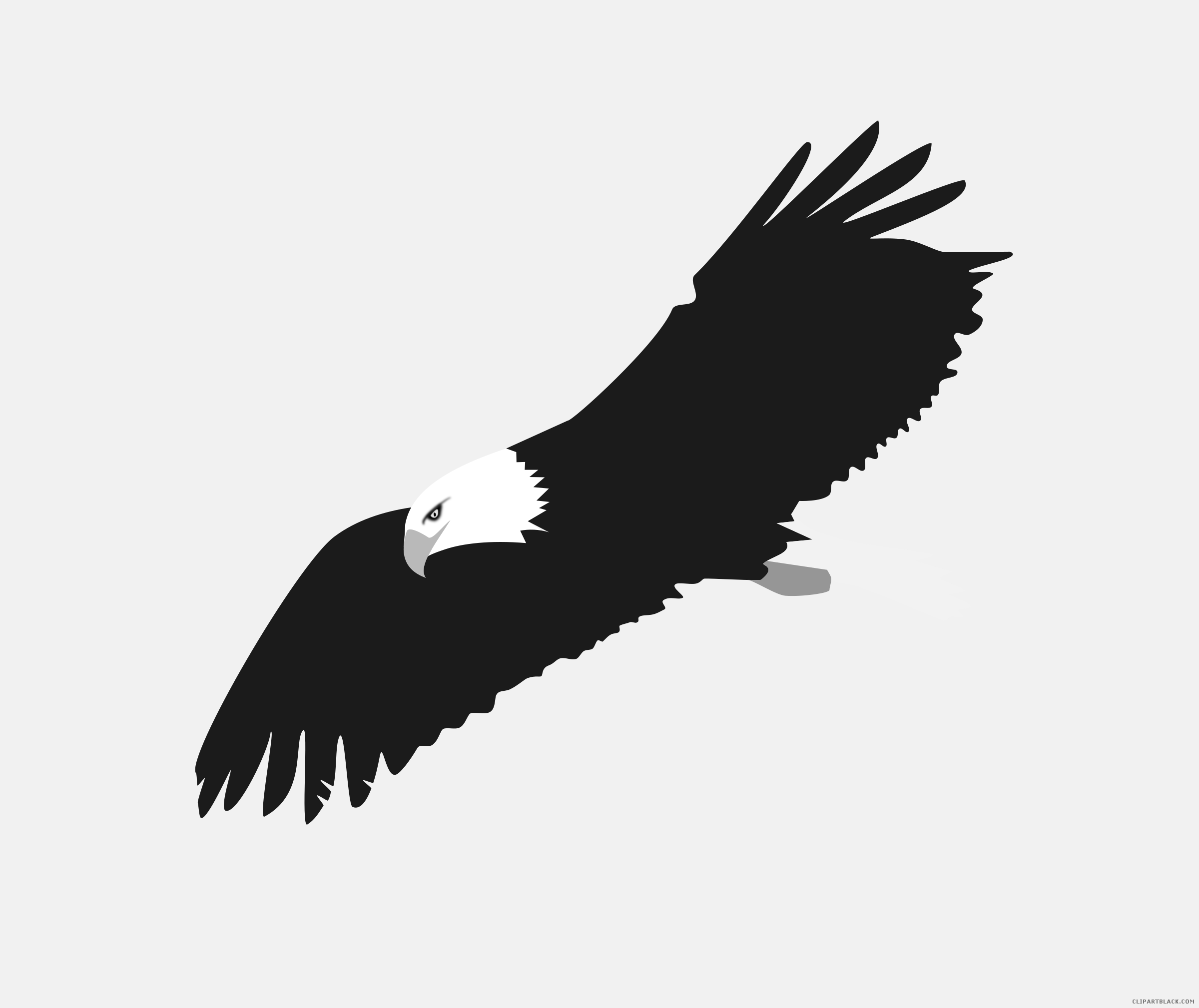 picture black and white stock 3 clipart desert eagle. Soaring animal free black