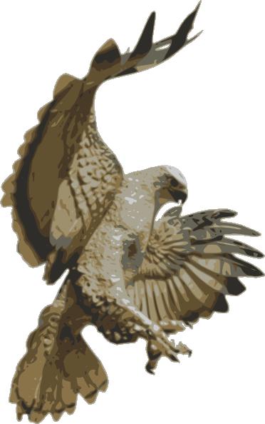 clip art royalty free Bird clip art at. 3 clipart war hawks