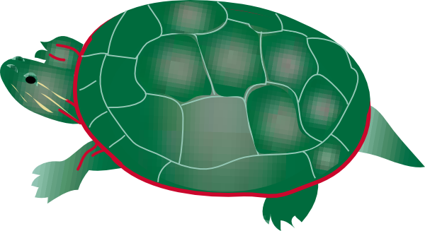 picture stock 4 clipart turtle. Painted clip art at