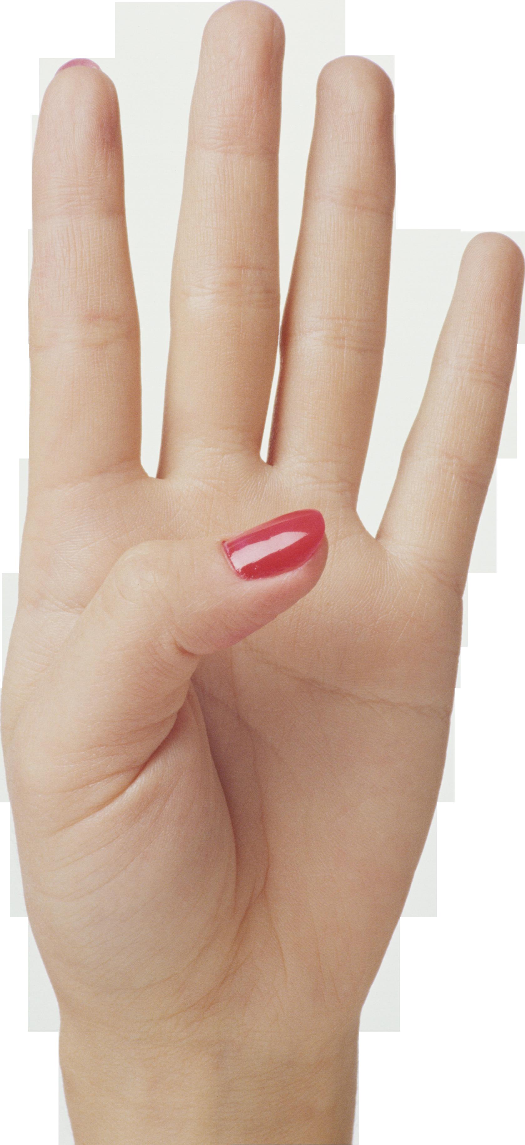 png free Finger transparent four. Hand png image purepng