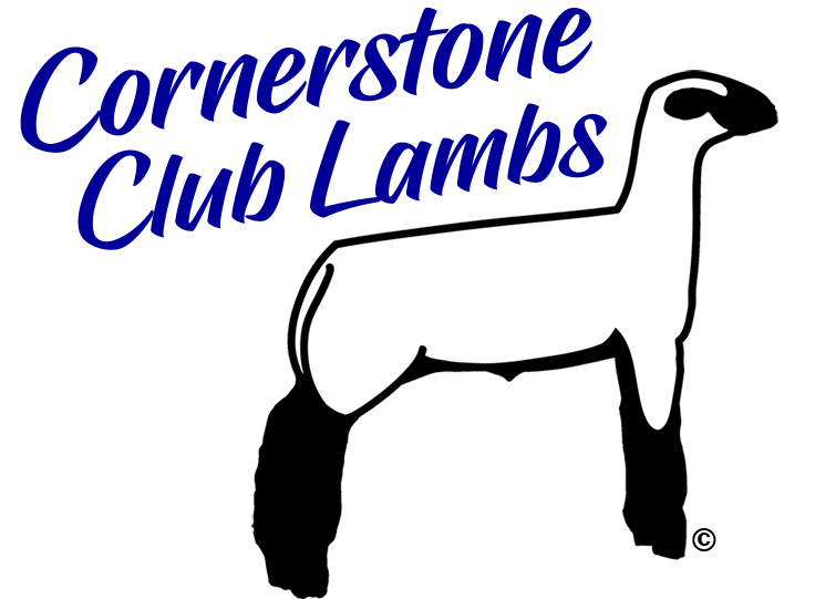 clip art royalty free download Show Lamb Silhouette at GetDrawings