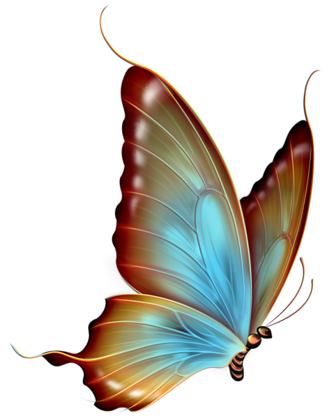 picture transparent download Brown and blue transparent. Butterflies clipart clear background.