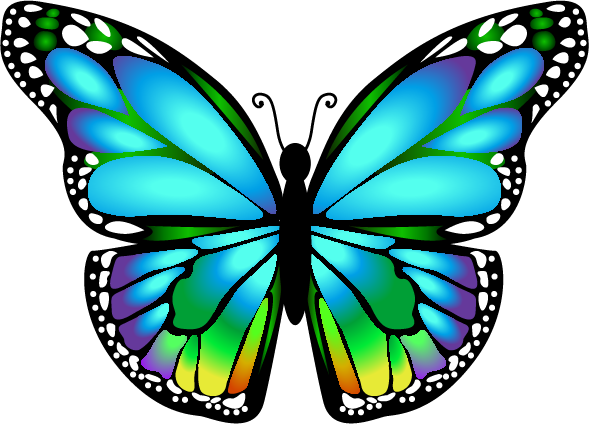 clip art Mariposa ms. 5 clipart colored butterfly