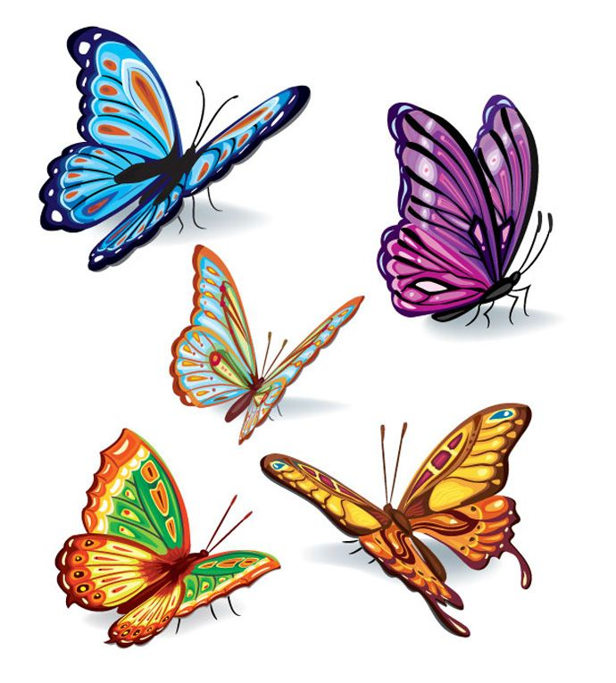 clip art black and white stock  images gallery for. 5 clipart colored butterfly.