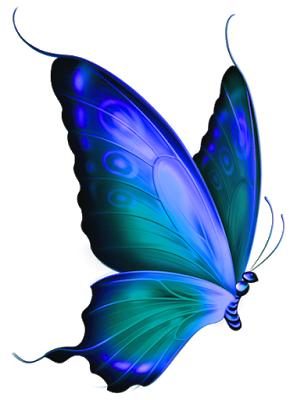 clip art royalty free stock Pin by erin thoele. Feather clipart butterfly
