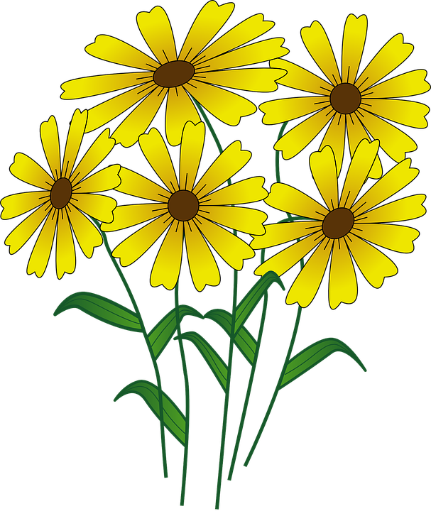 clip art freeuse stock 5 clipart yellow. Daisies five flower frames
