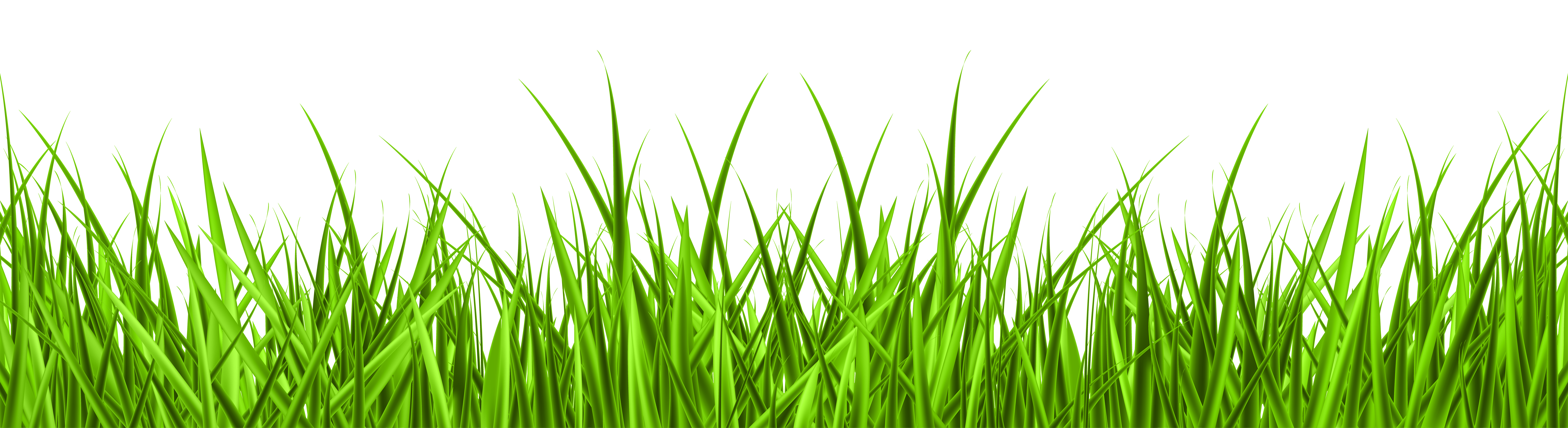 png black and white library Lawn clipart wild grass. Png clip art image.