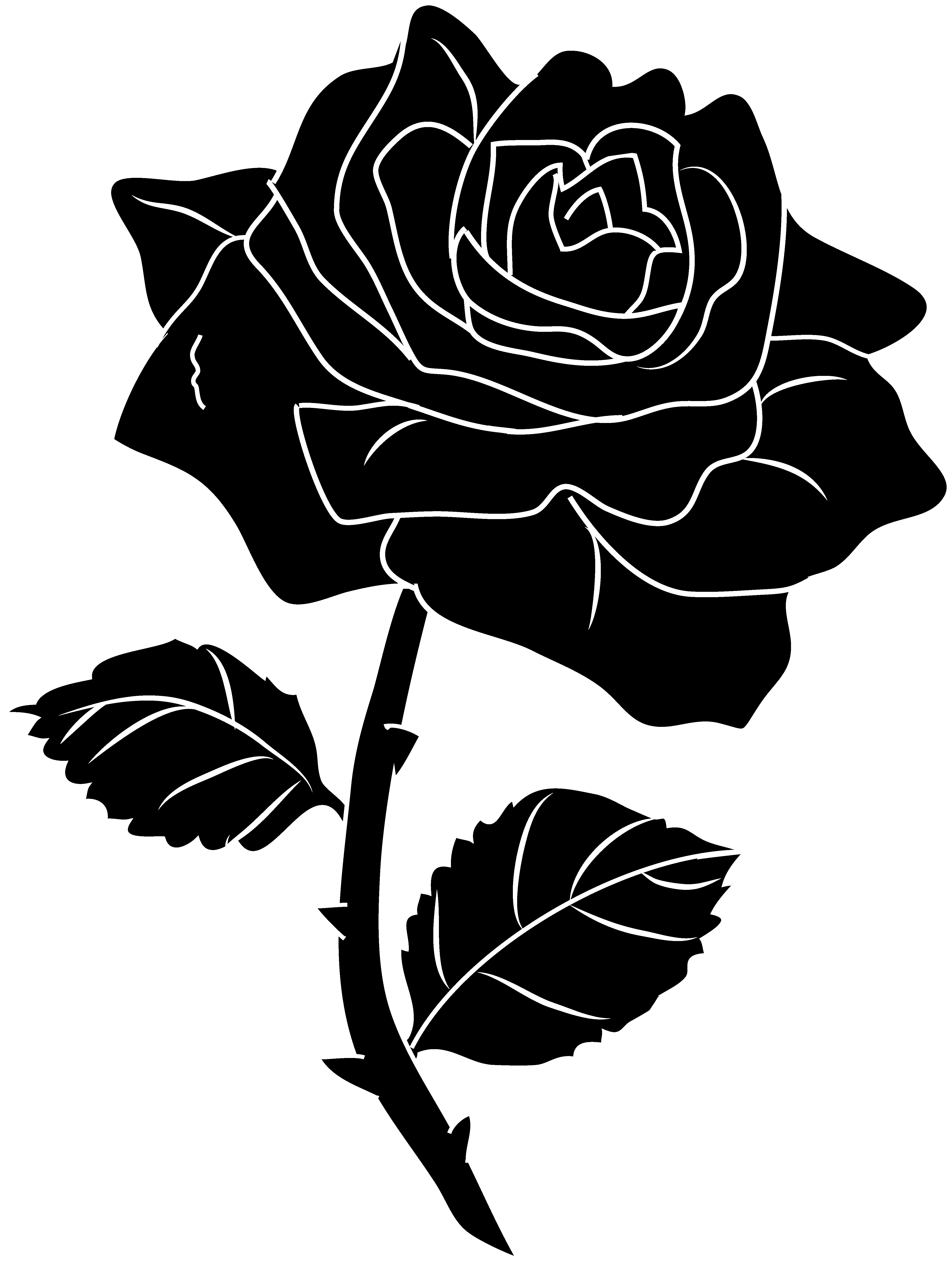 svg free stock Rose Flowers Clip Art Black And White