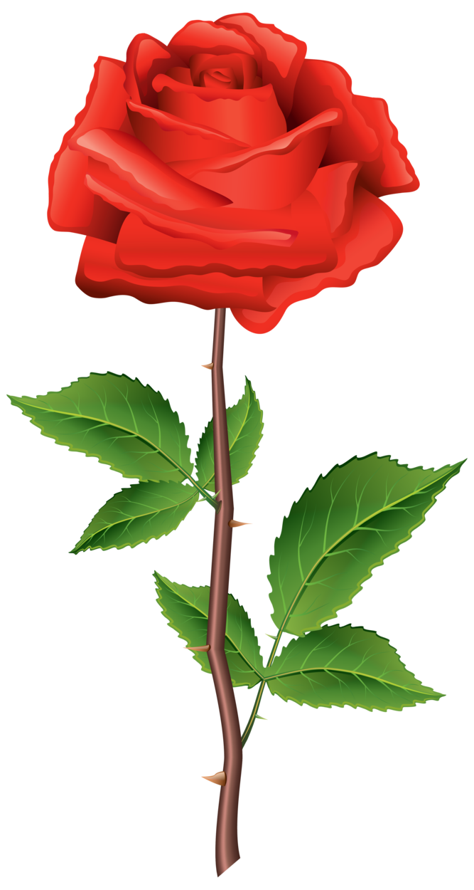 svg royalty free library A clipart rose. Stem red png
