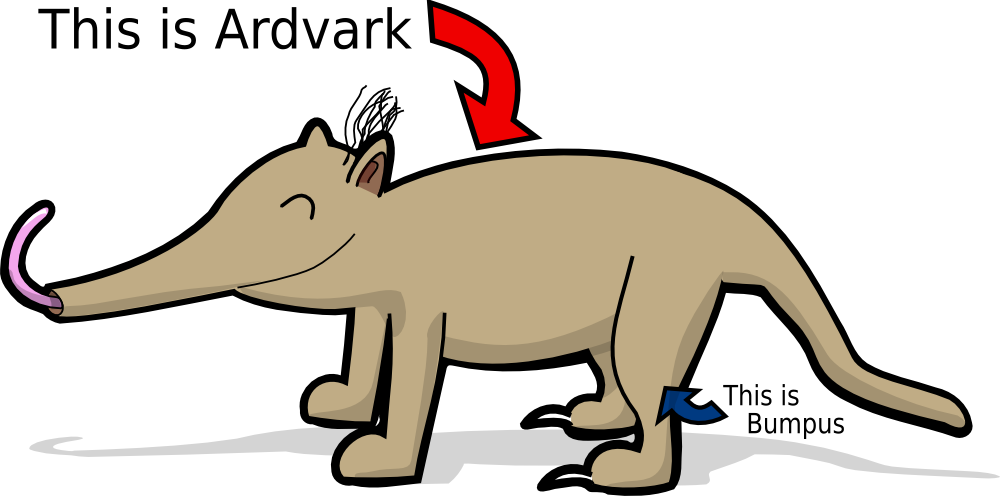 graphic free stock Ardvark the by glitch. Aardvark drawing cute