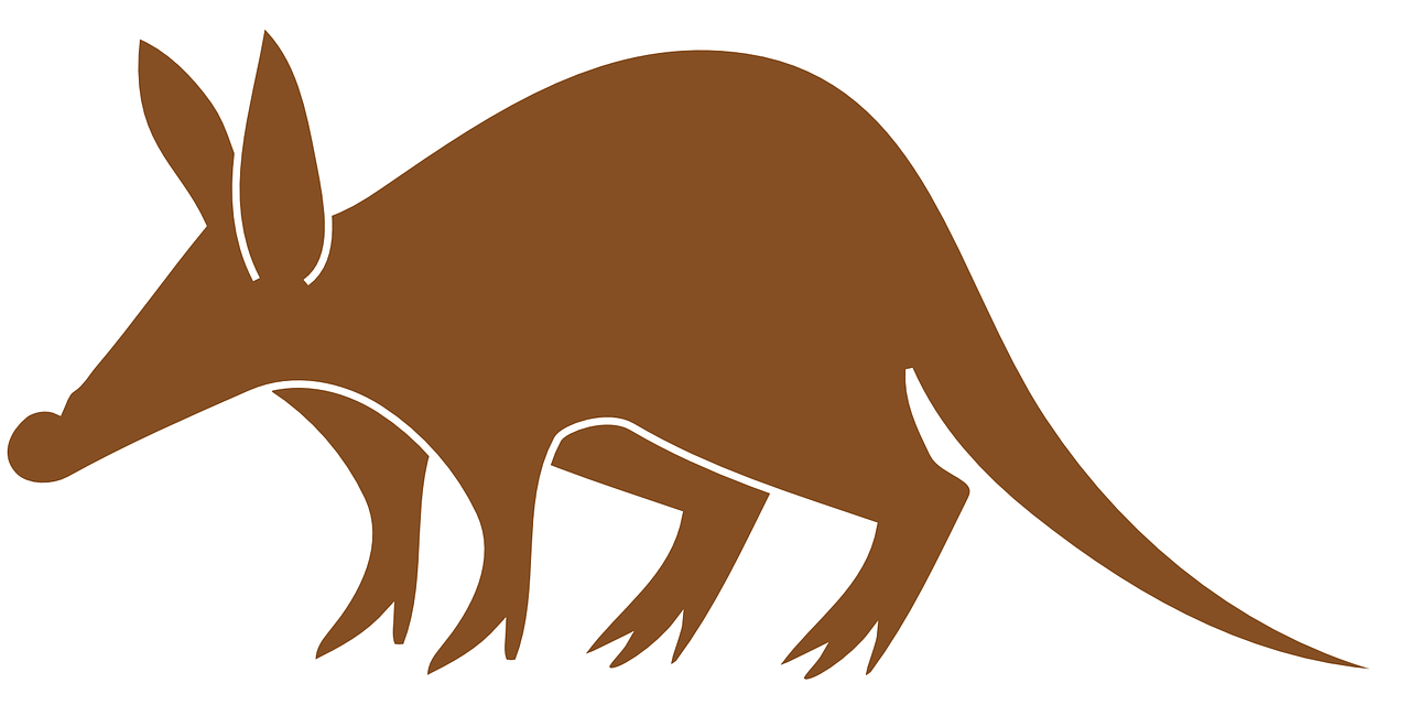 png freeuse library Aardvark drawing cute. Animal tail brown transparent