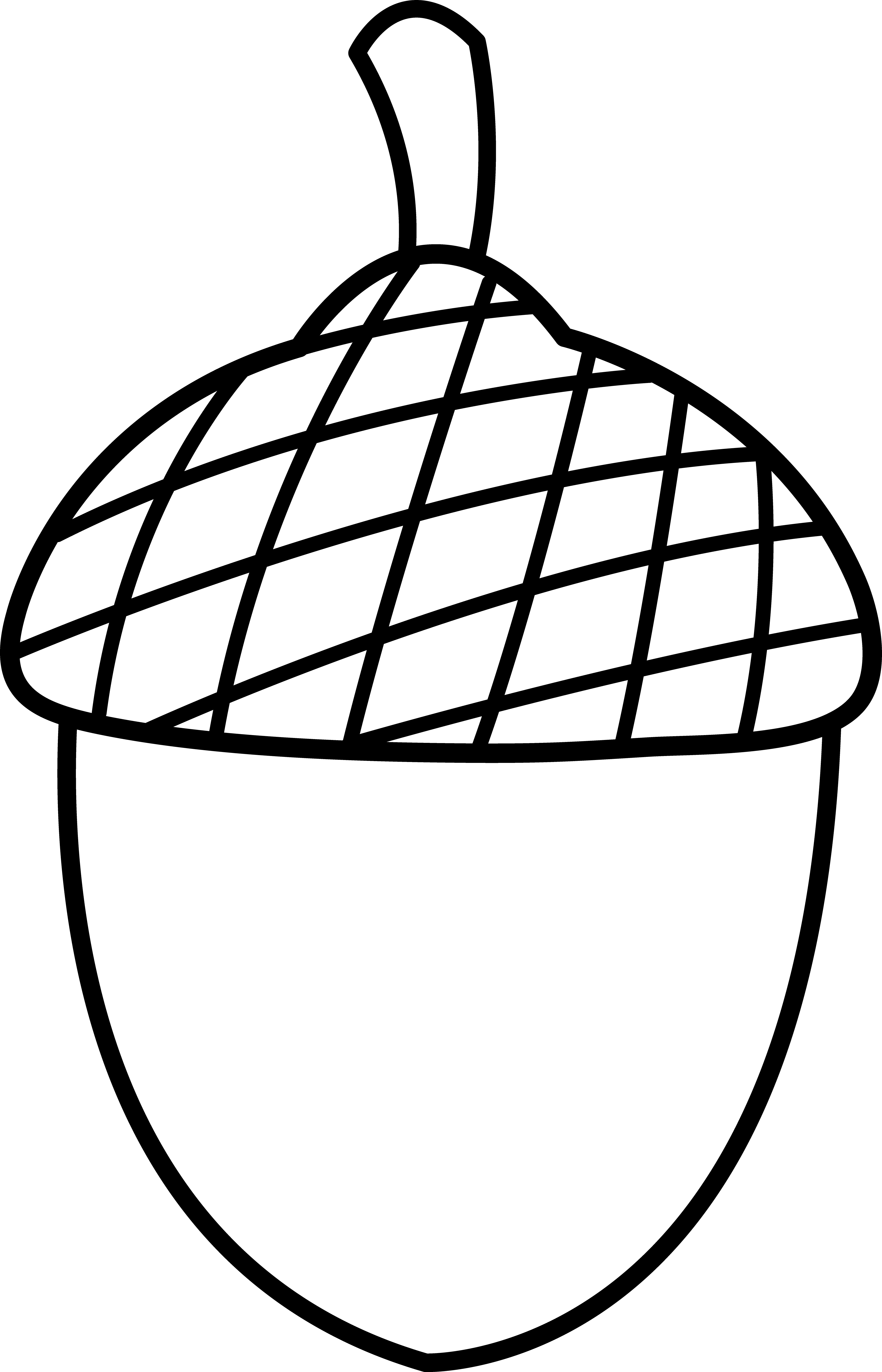 picture royalty free download Black and white . Acorn clipart.