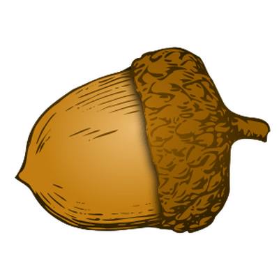 picture freeuse library Acorn clipart. Autumn free on dumielauxepices