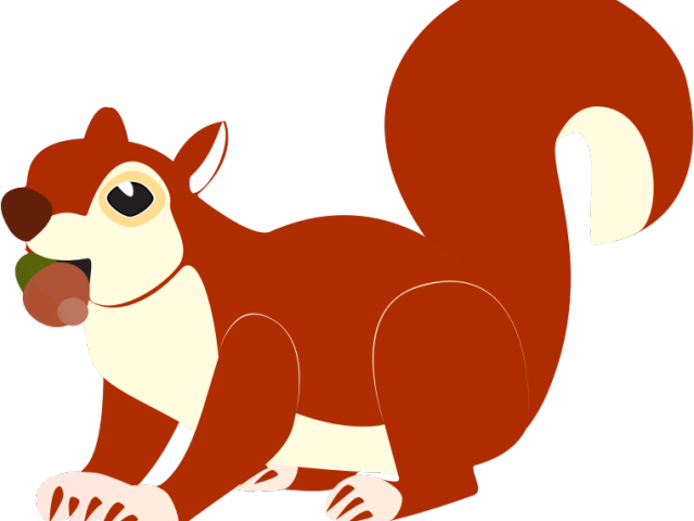 image royalty free stock Acorn clipart fox squirrel. Red free on dumielauxepices