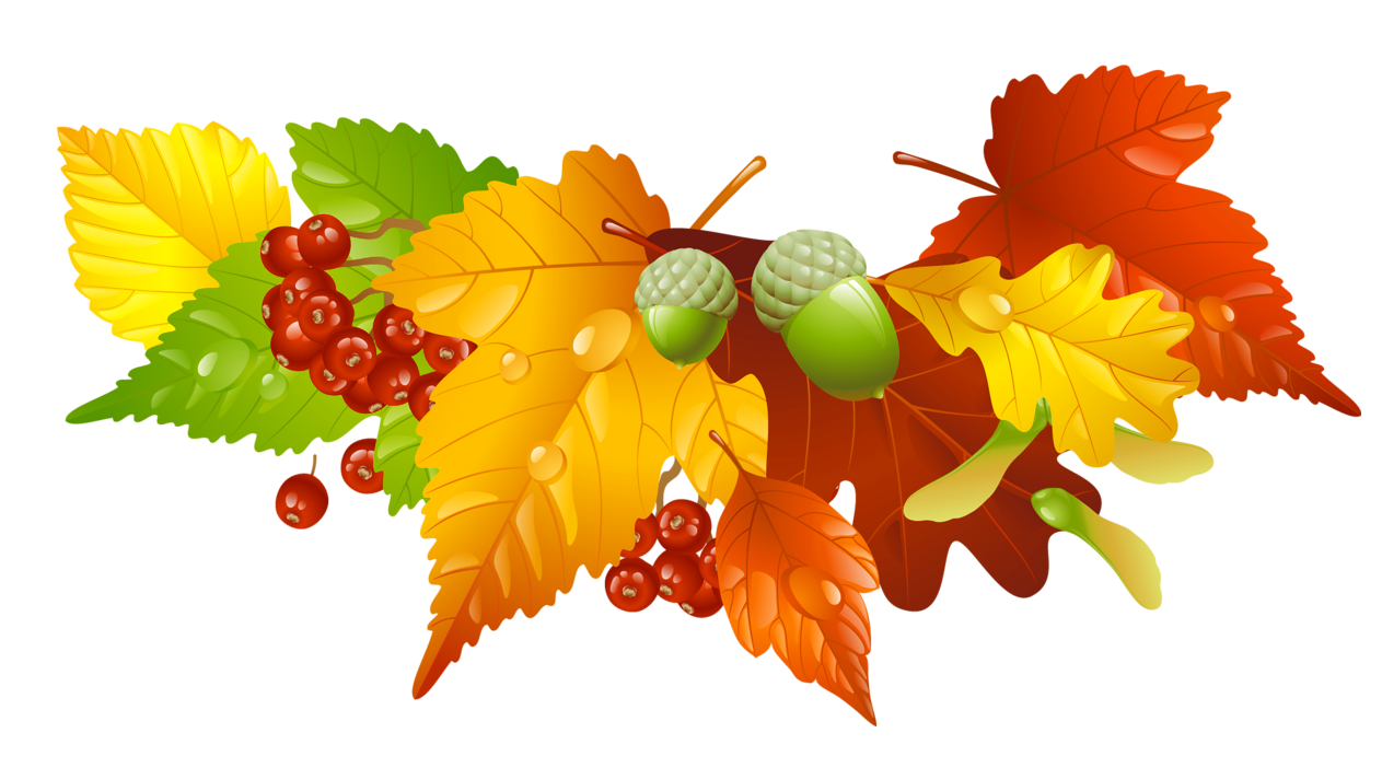 clipart freeuse Autumn Leaves and Acorns Decor PNG Picture