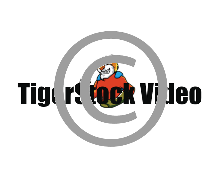 clip black and white library Backgrounds tigerstock buying options. Action clipart video
