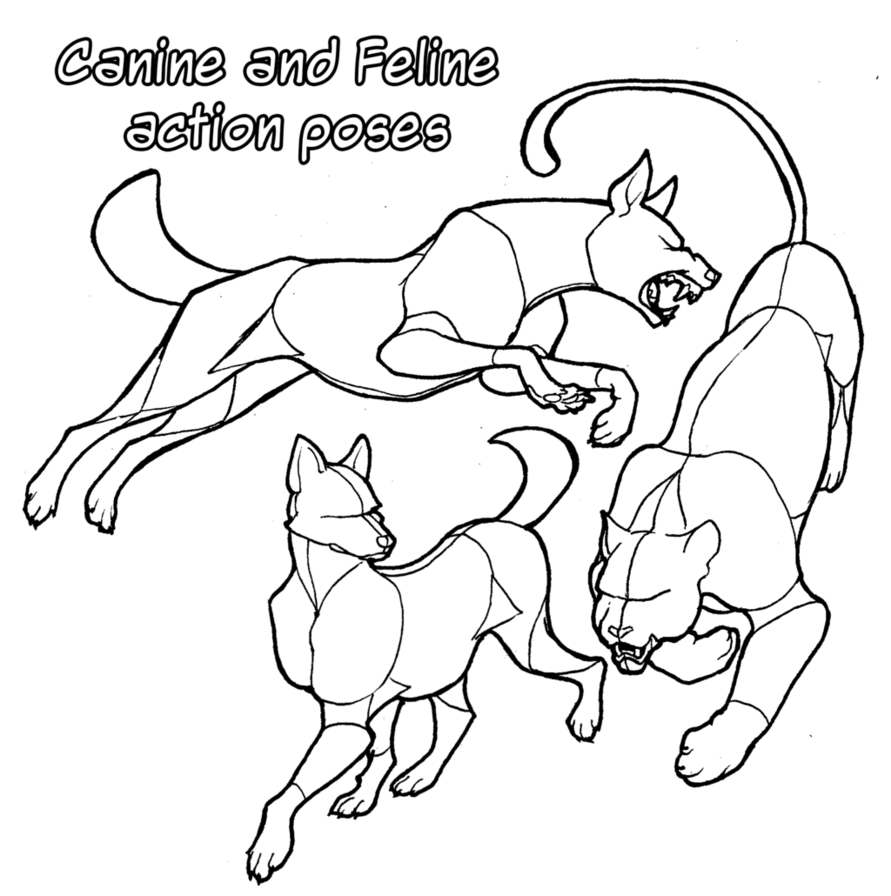 image freeuse Pose reference canine and. Drawing ref comic book