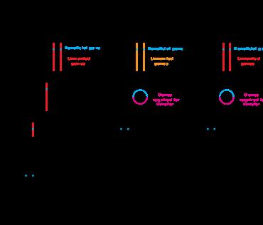 graphic royalty free Genetic engineering