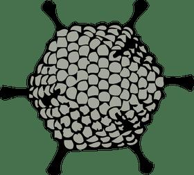 clipart freeuse stock Gene therapy of malignant mesothelioma through adenovirus