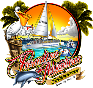 banner freeuse stock Adventure clipart sightseeing. Tour sailing trips panama