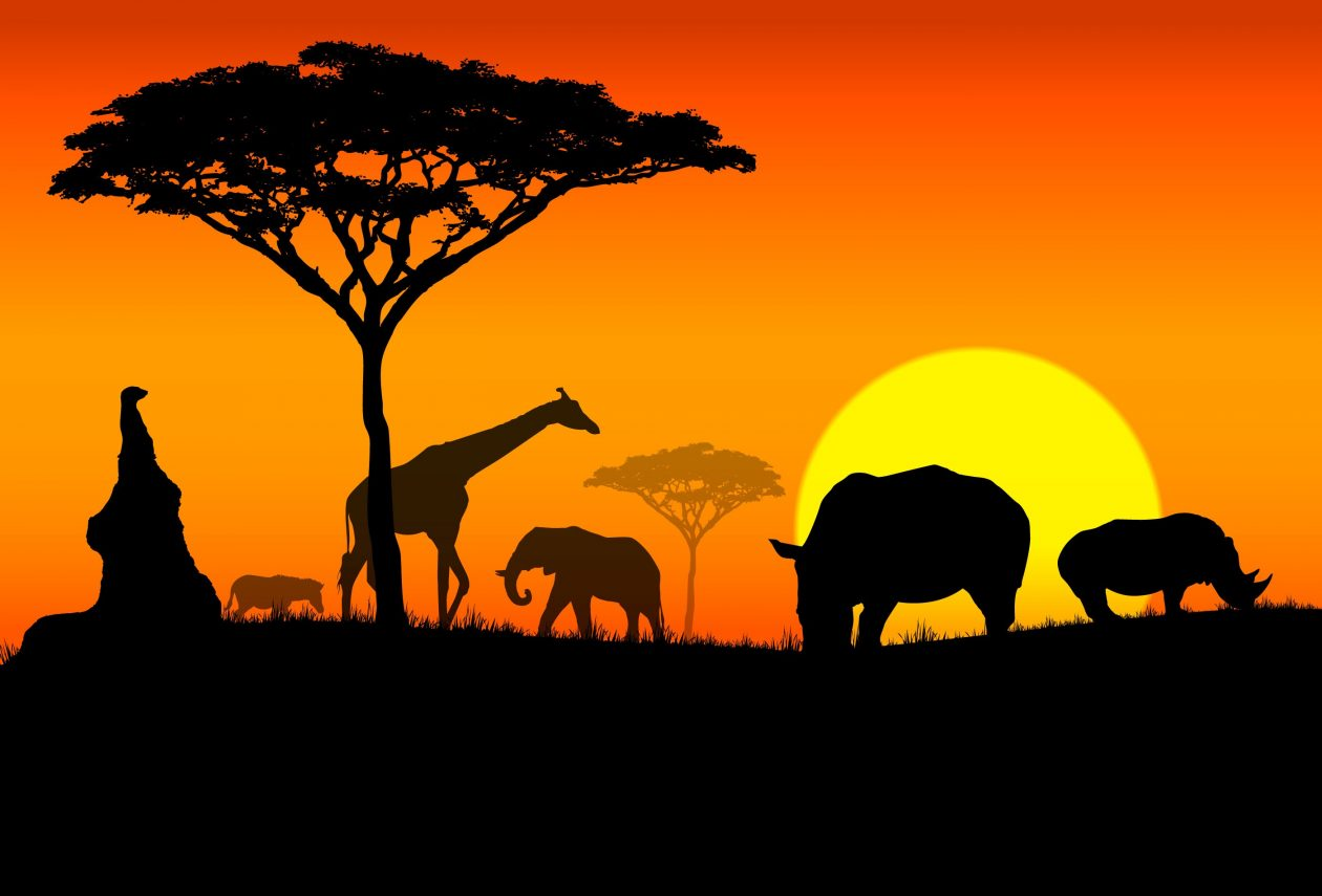 clip art royalty free Cliparts x making the. Africa clipart plain