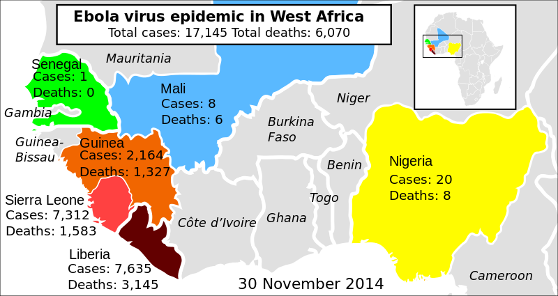 svg library stock ebola vector virus infographic #96098647