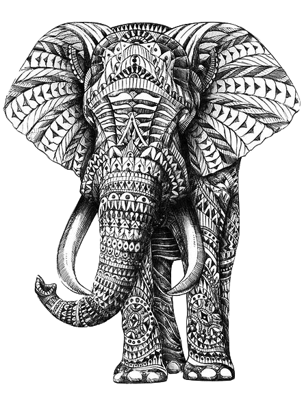 picture black and white library ornate elephant