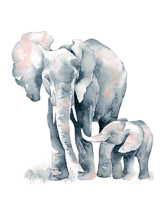 clipart royalty free library Watercolor painting African elephant Drawing