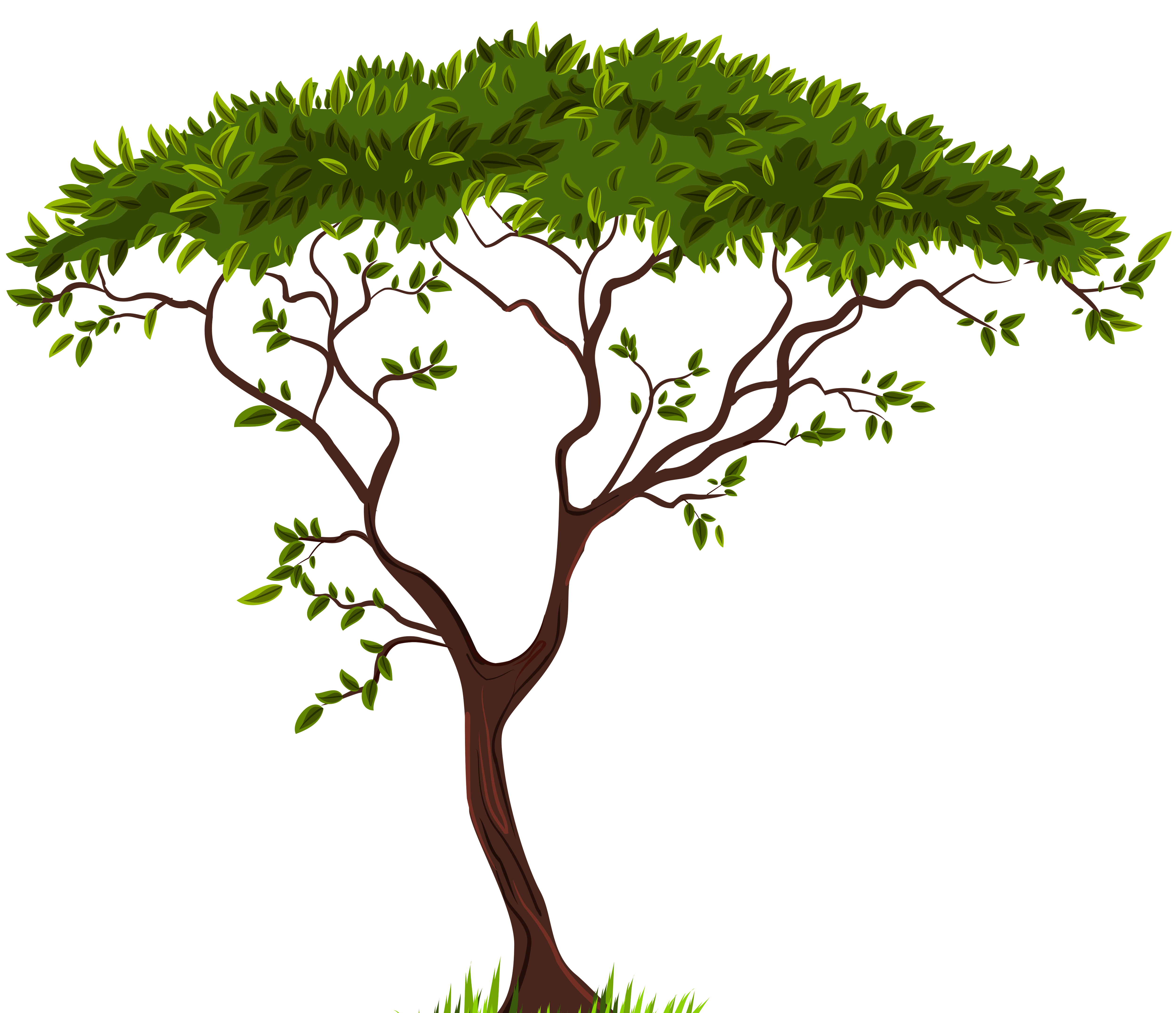 banner royalty free Africa clipart plain. Exotic tree png clip