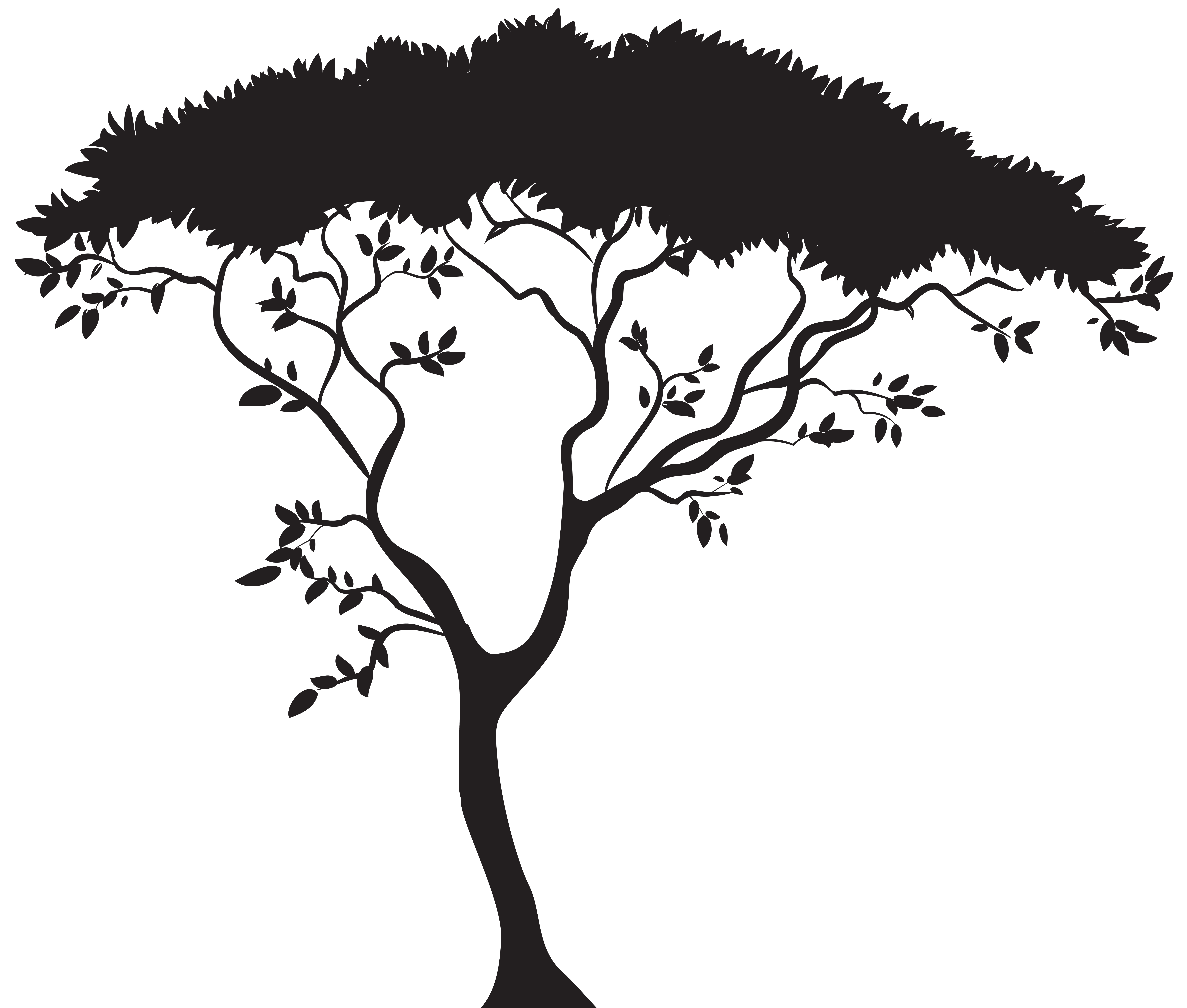 clipart library library African Trees Drawing at GetDrawings
