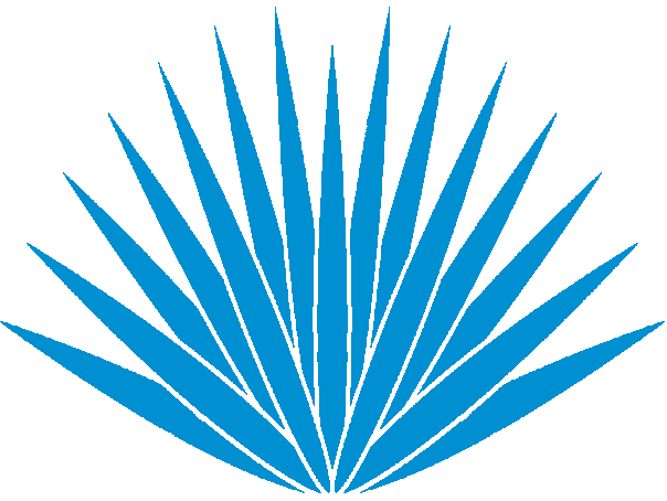 graphic freeuse stock Agave PNG Transparent Agave