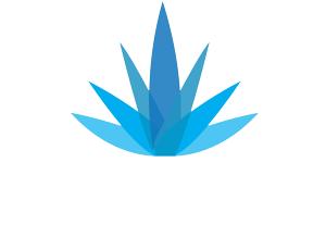 clip art library library Residencial El Agave Azul