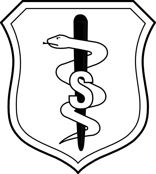 vector freeuse United States Air Force Biomedical Sciences Corps Badge Clip Art at