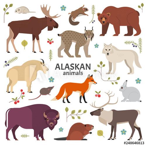 banner black and white Alaska clipart mammal. Alaskan animals vector illustration