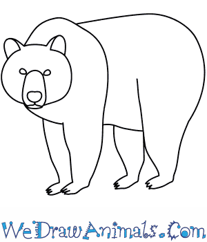 image royalty free library How to draw a. Drawing bears easy