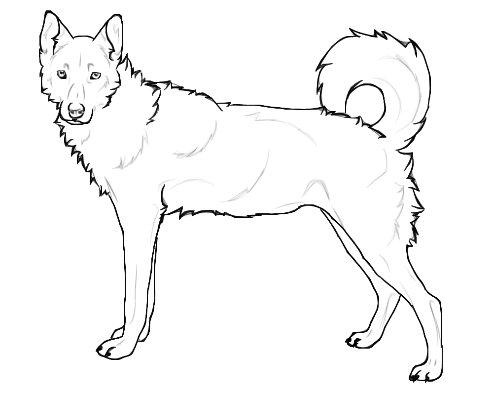 png black and white download Siberian Husky Coloring Pages