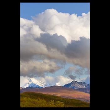 image stock Denali National Park