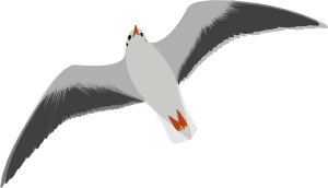 svg royalty free stock Sea Gull Seagull Clip Art at Clker