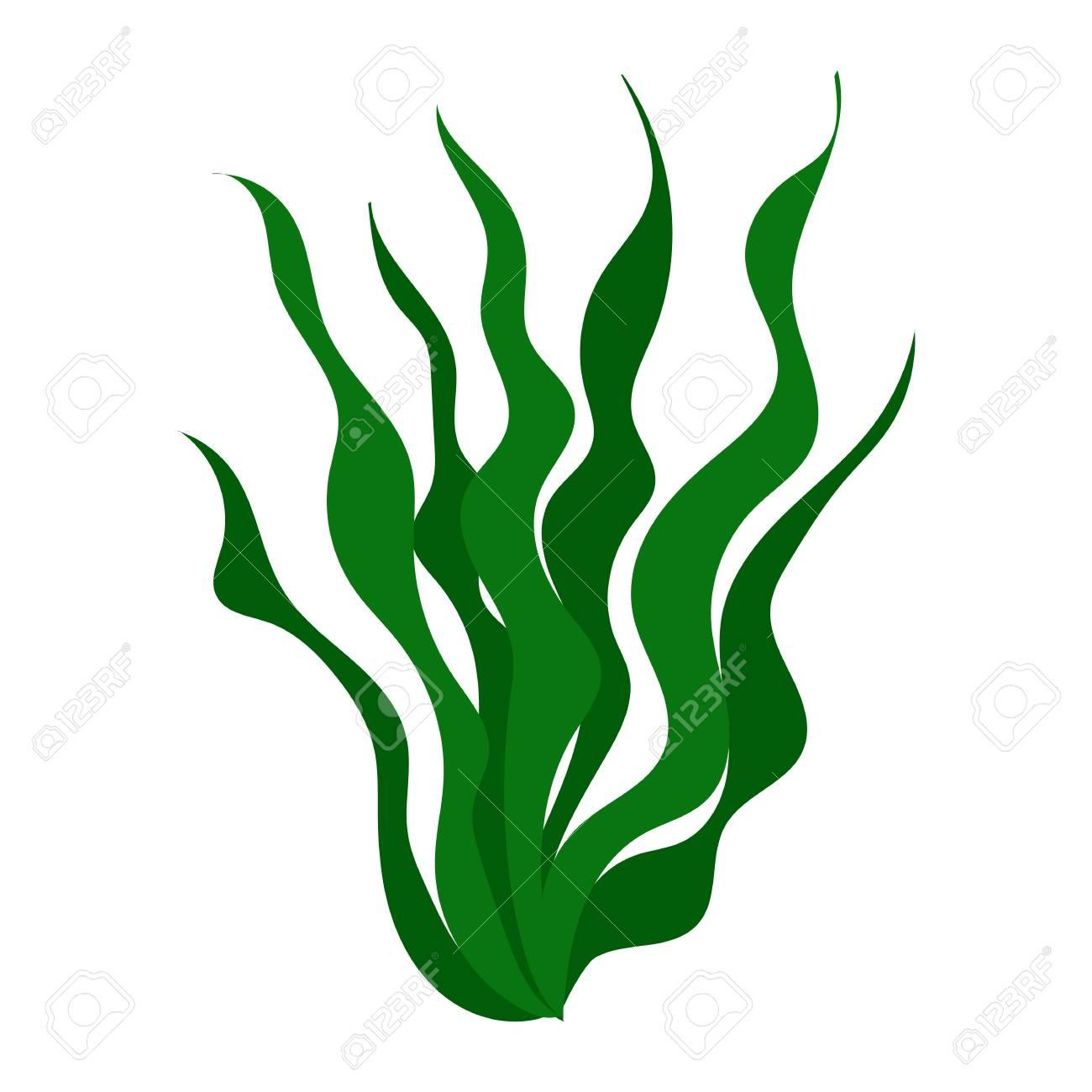 jpg free download Green isolated illustration on. Algae clipart algea.