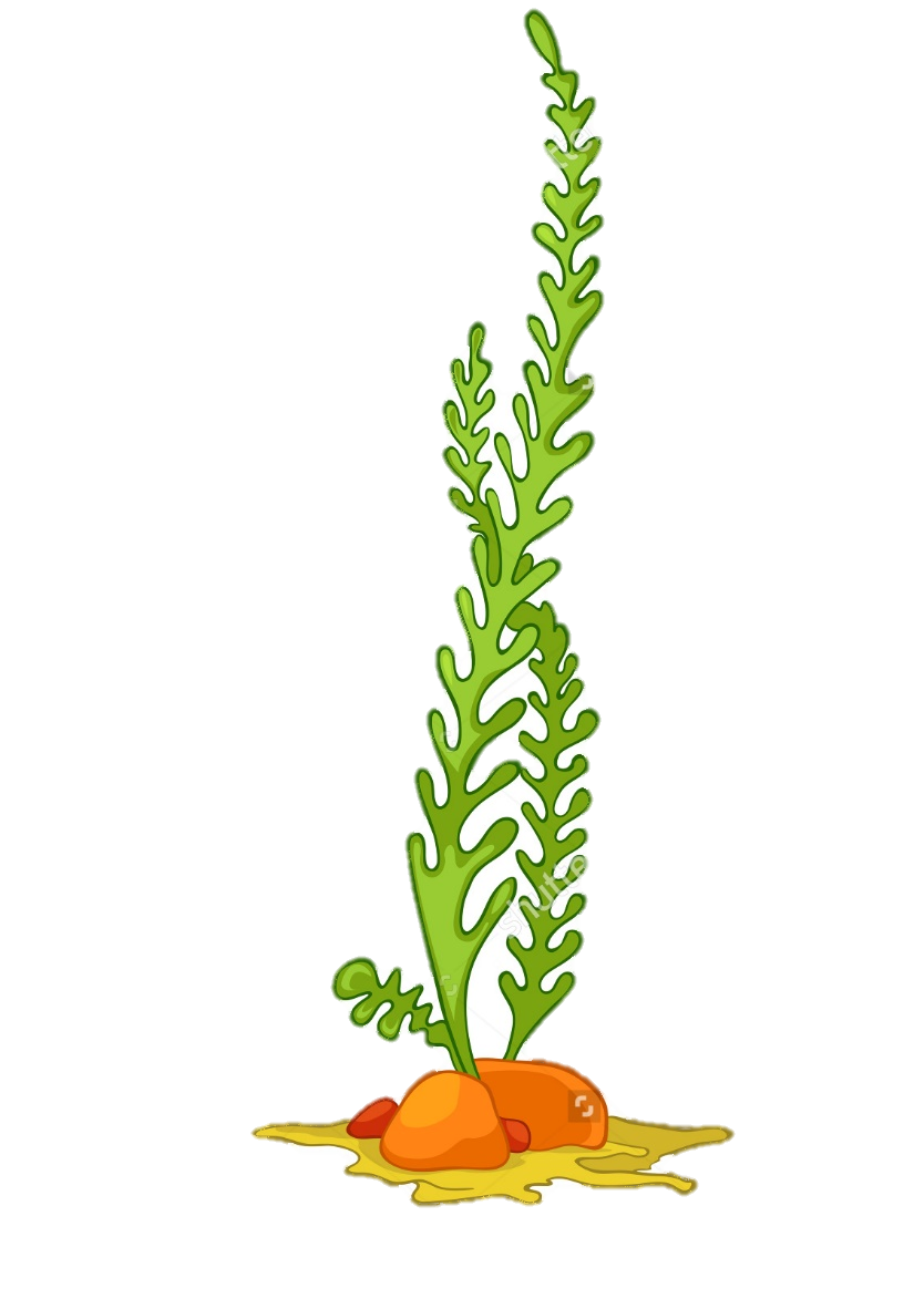 png royalty free stock Sea Plants