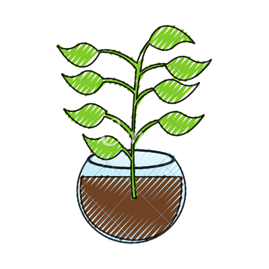 banner Underwater Plants Clipart at GetDrawings