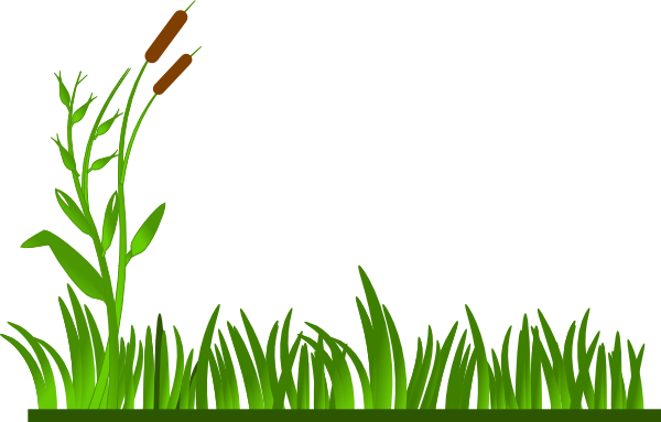 clipart black and white stock Border no background panda. Landscaping clipart pond grass.