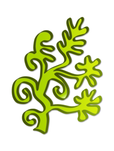 clipart free stock Algae Clipart clip art