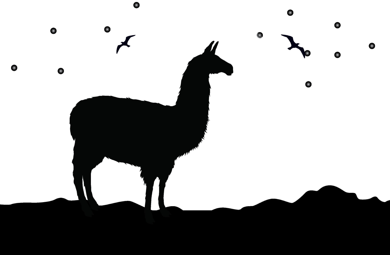 black and white Alpaca clipart. Silhouette clip art at