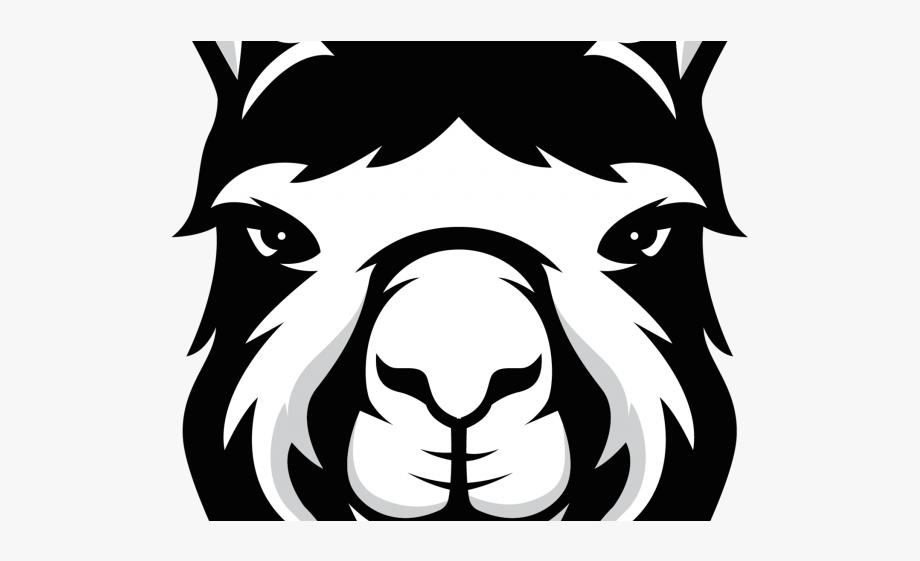 image stock Alpaca clipart face. Llama cricut free cliparts.