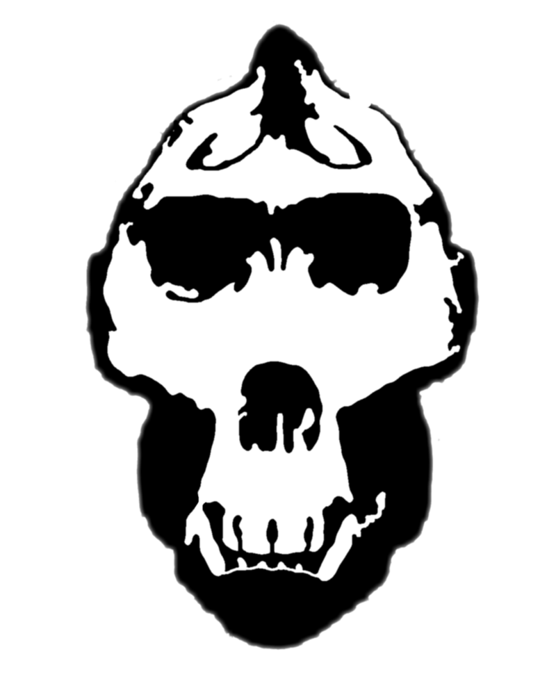 picture library library Gorilla skull png