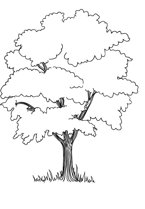 png black and white library The Trees In The Jungle Coloring Pages